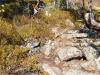 Strecke Downhill Lamer Winkel Quelle: R.Grosser