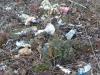 Müll Quelle: Wilhelm Schuld