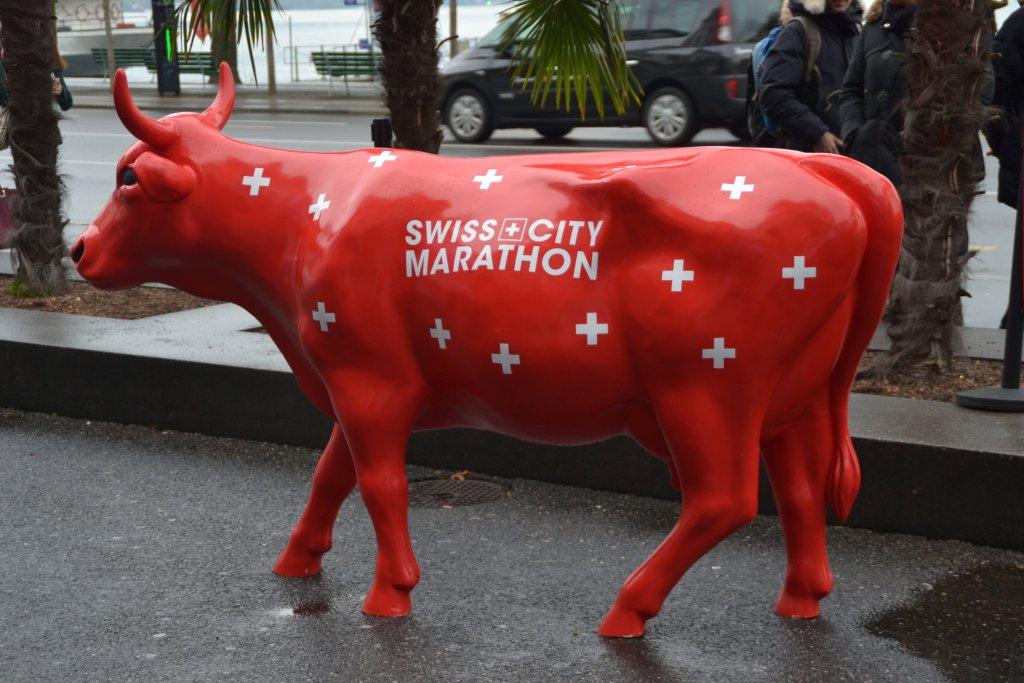 8. SwissCityMarathon in Lucern - Marathon Kuh
