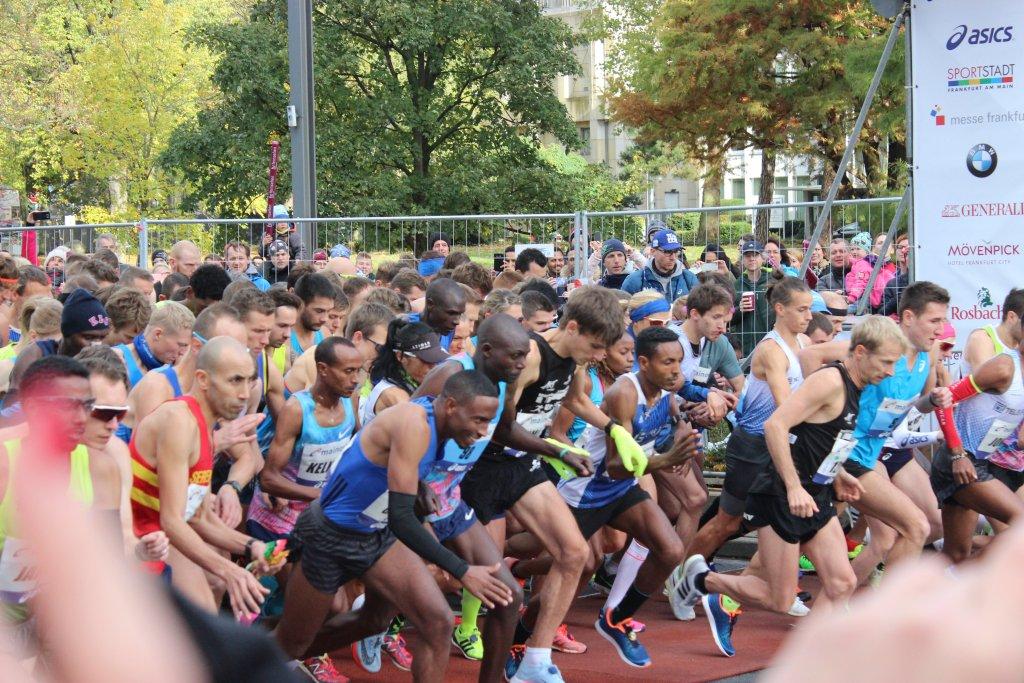 Der Startschuss ist gefallen - Bild: Andrea Frank www.vom-taubertal.de