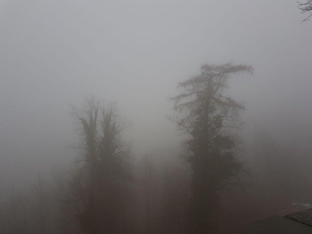Gebilde im Nebel