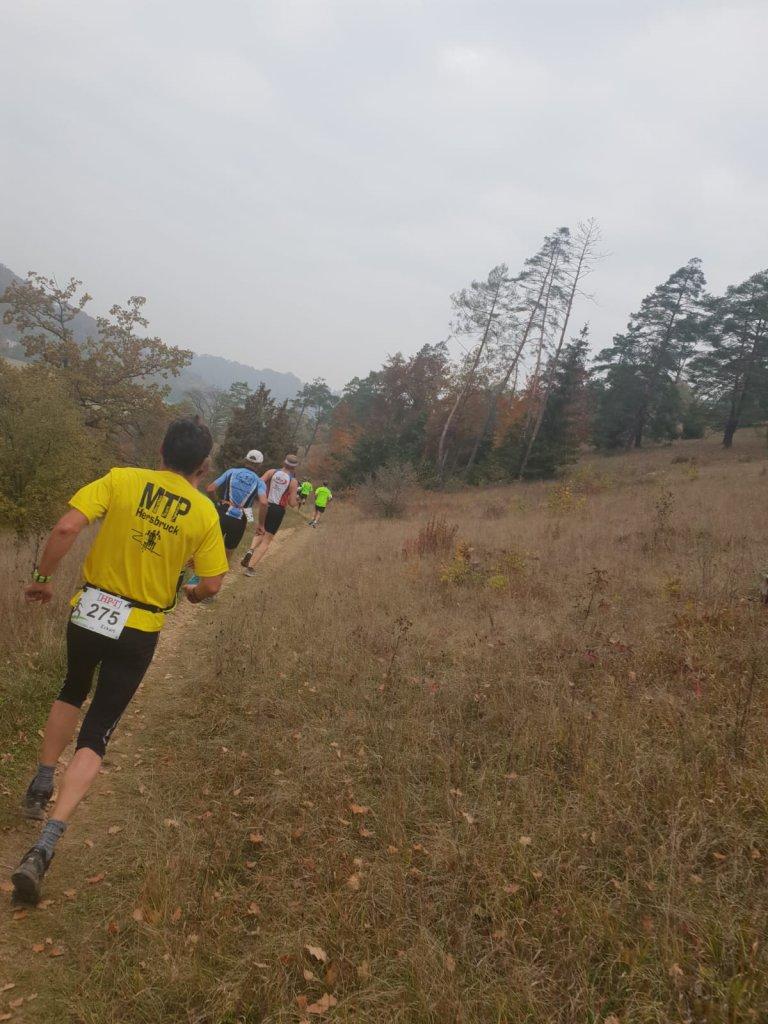 Trailrunning in Dollnstein