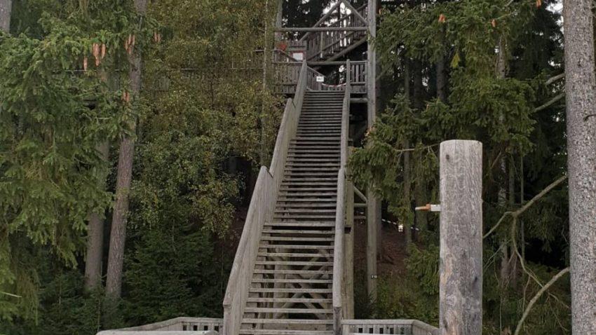 8480 Treppenstufen galt es zu bezwingen