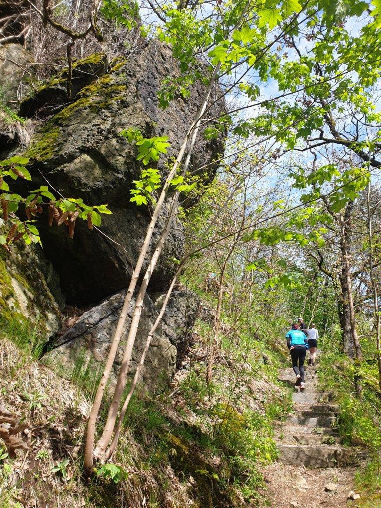 Anspruchsvolle Passagen beim Trail 4 Germany