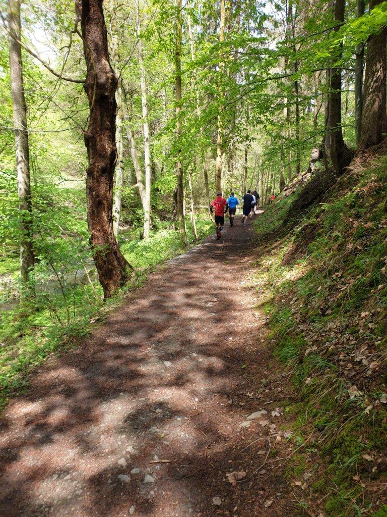 Trail 4 Germany